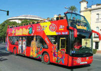 Seville City Hop-on Hop-off Tour