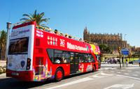 Shore Excursion: City Sightseeing Palma de Mallorca Hop-On Hop-Off Tour with Optional Boat Ride or B