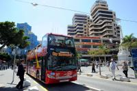 Tenerife Shore Excursion: City Sightseeing Santa Cruz de Tenerife Hop-On Hop-Off Tour