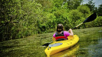 Kayaking on Broad River with Wine Tasting