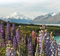 3-Day South Island Circle Tour from Christchurch