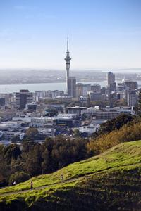 Auckland Shore Excusion: City Sightseeing Tour, Harbor Cruise and Sky Tower