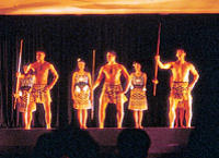 Christchurch Maori Concert and Kiwi Viewing