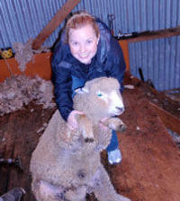 Christchurch Sheep Farm Visit, Christchurch Tours and Sightseeing