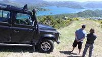 Picton Shore Excursion: Gondola Hill 4WD Tour, Picton Tours and Sightseeing