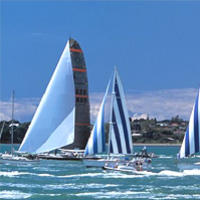 Auckland Harbour Lunch Cruise