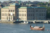 Viking History Half-Day Tour from Stockholm