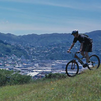 Wellington Mountain Bike and Hike Day Tour including Lunch