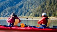 Half Day Tonsina Creek Kayaking Adventure from Seward