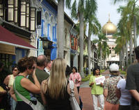 Kampong Glam and Sultan Mosque Morning Walking Tour