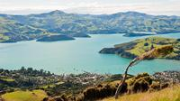 Akaroa Self Guided Audio Tour, Akaroa Tours and Sightseeing