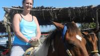 Acapulco Beach Horseback Riding  Baby Turtle Release with Chapel of Peace Visit