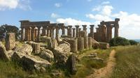 Private Wine Tour and Archeological Area of Selinunte with licensed Guide