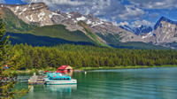 Jasper City Sightseeing Tour and Maligne Lake Cruise