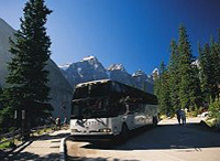 Jasper City Sightseeing Tour