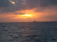 Oahu Sunset Buffet Dinner Cruise