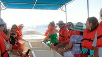 Explore Los Cabos Day Tour: City Sightseeing, Glass-Bottom Boat Ride, Lunch and Shopping