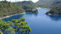 Montebello Lakes, El Chiflon Waterfalls and Amatenango Handcrafts Day Trip from San Cristobal de las