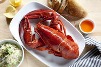 New York City Fourth of July Fireworks Cruise with Lobster Dinner