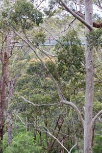 3-Day Margaret River Tour and Valley of the Giants Tree Top Walk from Perth