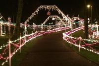 Nashville Holiday Lights Tour Including Lotz House