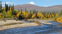 Chena River Guided Fishing Tour