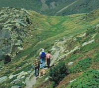 Pyrenees Mountains Small Group Day Trip from Barcelona