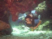 PADI Certified Scuba Diving in Cozumel