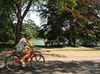 Book Small-Group Central Park Bike Tour Now!