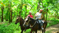 Horseback Riding and Banana Plantation Tour from La Cruz