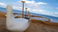 Cultural Outrigger Canoe and Turtle Tour