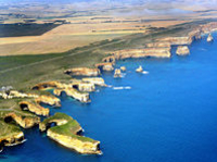 Great Ocean Road Small Group Eco Tour from Melbourne