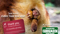 Currumbin Wildlife Sanctuary: 12 Month Membership image 1