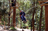 Picture of Currumbin Wildlife Sanctuary: Green Challenge Zipline Canopy Tour