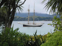 Bay of Islands Tall Ship Sailing on 'R. Tucker Thompson' Including BBQ Lunch, Paihia Sailing Charters & Windsurfing