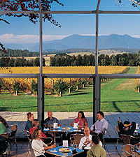 Yarra Valley Deluxe Winery Small-Group Tour from Melbourne