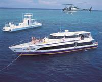 Cairns Super Saver: Great Barrier Reef Cruise plus Kuranda Scenic Railway plus Cape Tribulation Day Trip