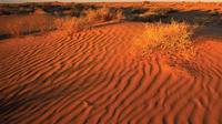 11-Day Simpson Desert 4WD Expedition from Adelaide to Alice Springs, Adelaide City Tours and Sightseeing