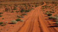 19-Day Canning Stock Route 4WD Expedition from Alice Springs image 1