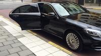 Private Departure Luxury Transfer: All Toronto Hotels and GTA to Toronto Pearson Airport