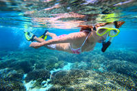 2-Day Best of Cairns and the Great Barrier Reef, Cairns Diving & Snorkelling