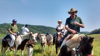 Horseback Riding on an Equestrian Farm in San Ignacio image 1