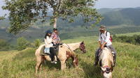 Horseback Riding Tour to the Sink Hole in Santa Familia image 1