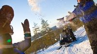 Lapland Snowmobiling Quick Spin: 2-hour Snowmobile Experience from Rovaniemi