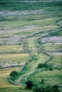 Best 2-Day Western Ireland Tour from Dublin by Train: Limerick, Cliffs of Moher, Burren and Galway