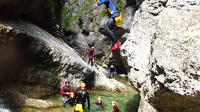 Canyoning Adventure in the Salzkammergut from Salzburg  image 1