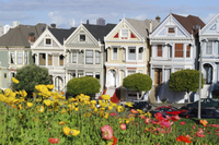 Food Lover's Sightseeing Tour of San Francisco Picture