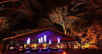 Cairns: Gastronomisches Erlebnis bei 'Flames of the Forest'