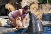 Picture of SeaWorld San Antonio