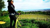 Vineyards of Vienna Downhill Scooter Tour with Panoramic Views image 1